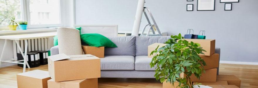 biens immobiliers meublés