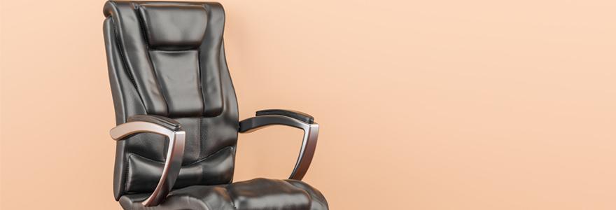 fauteuils de direction